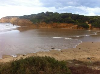 photo shows inflow of seawater into Spring Creek estuary due to wave surge.